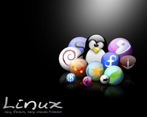 zaib-linux-choice